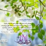 thumb_HamMihan-201514997715232949611437074454.7534.jpg