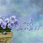 flower-image.jpg