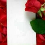 thumb_HamMihan-20181496203664660361540934760.7758.jpg