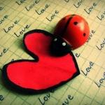 جملات-عاشقانه-1.jpg