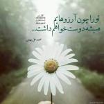 romantic_31-cafepix.ir_.jpg