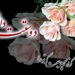 Photos-flowers-romantic-27-1.jpg