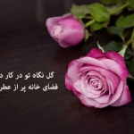 flower-text-pictures-2.jpg