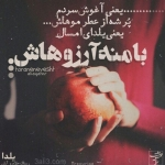 new-taraneh-graphy-9.jpg