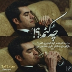 new-taraneh-graphy-19.jpg