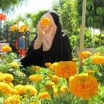 hejab-profile-hayatkhalvat-com-14.jpg