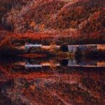 autumn0066-59e7b7a653c2d__880-620x620.jpg