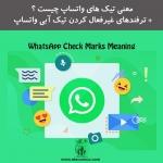 Elecomco-Com-Whatsapp-Check-Marks-Meaning.jpg