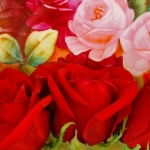 57428_Red Roses on a Painted Plate.jpg